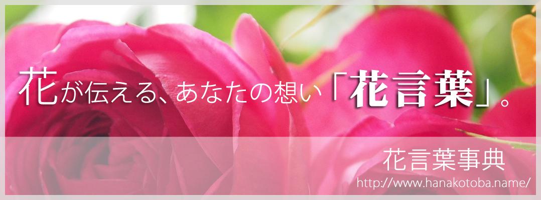 花言葉事典:花ことばは自然からの贈りもの 花言葉を花のなまえで表示する辞典サイト